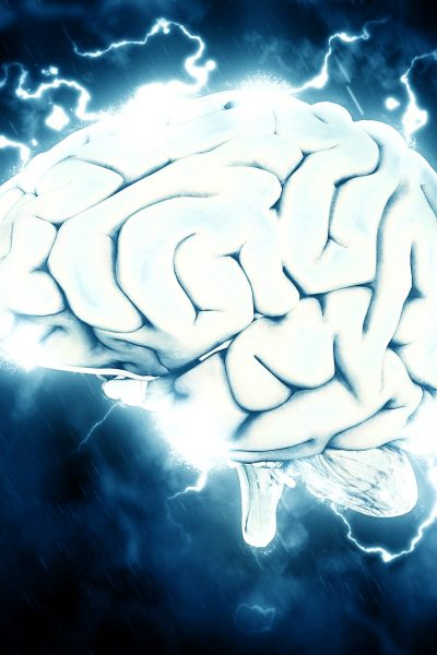 Understanding How Nootropics Work